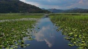 Lago Skadar archivi video
