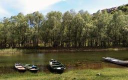 Lago Skadar em Montenegro, Europa fotos de stock royalty free
