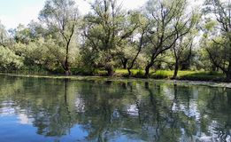 Lago Skadar em Montenegro, Europa fotos de stock