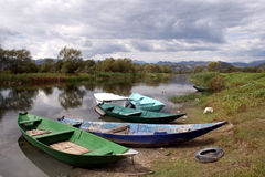 Lago Skadar - Montenegro Imágenes de archivo libres de regalías