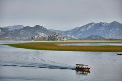Lago Skadar Parque nacional montenegro verão imagens de stock
