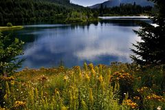 Lago Snoqualme Washington gold Fotografia Stock Libera da Diritti