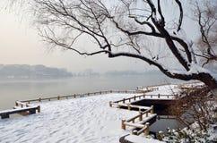 Lago snow Fotografie Stock