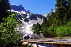 Lago snow Fotografía de archivo libre de regalías