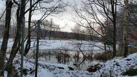 Lago Snowy Immagini Stock