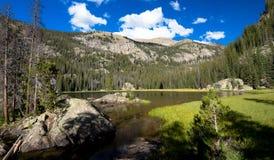 Lago solitario pine en el Mt Craig en el lago magnífico imagen de archivo