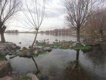 Lago solo Fotografia Stock