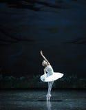 Lago solo swan di Lakeside-balletto del cigno del cigno- fotografie stock