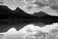 Lago Spillway immagini stock libere da diritti