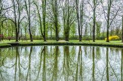Lago spring, árboles verdes Fotos de archivo