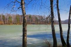 Lago spring Imagen de archivo libre de regalías