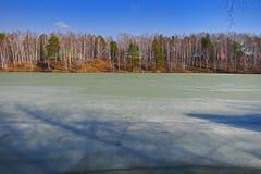 Lago 2 spring Fotografie Stock Libere da Diritti
