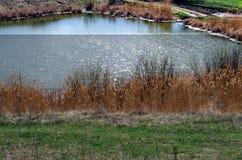 Lago spring Fotos de archivo