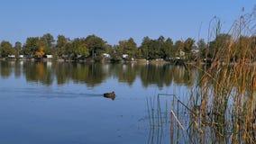 Lago Staffelsee cerca de Murnau, Baviera, Alemania metrajes