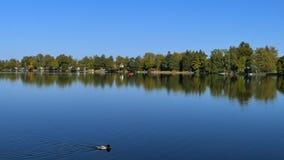 Lago Staffelsee cerca de Murnau, Baviera, Alemania almacen de metraje de vídeo