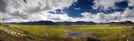 Lago stagionale coperto di erba e di piante verdi e rosse con le colline ai precedenti Fotografia Stock