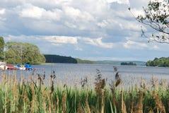 Lago sueco cercado por árvores Fotos de Stock Royalty Free