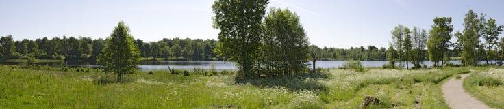 Lago sueco no verão Fotos de Stock