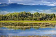 Lago sull'Alaska fotografia stock