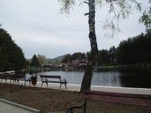Lago sulla montagna di Zlatibor in Serbia fotografie stock
