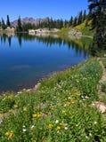 Lago summer Imagen de archivo