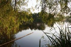 Lago summer Fotografía de archivo