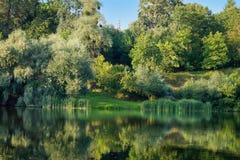 Lago summer imagen de archivo libre de regalías