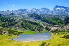 Lago summer en Asturias foto de archivo