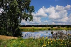 Lago summer fuera de la ciudad Fotografía de archivo libre de regalías