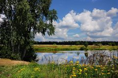 Lago summer fuori della città Fotografia Stock Libera da Diritti