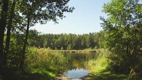 Lago summer, un marco estático metrajes