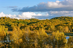 Lago Sun y abedul blanco en el otoño Imagen de archivo libre de regalías