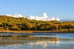 Lago Sun y abedul blanco en el otoño Fotos de archivo libres de regalías