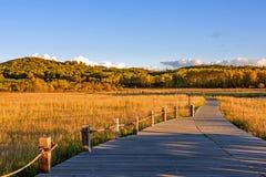 Lago Sun y trayectoria del tablón en el otoño Imagen de archivo libre de regalías