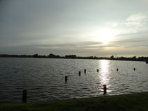 Lago sunset Fotografia de Stock Royalty Free