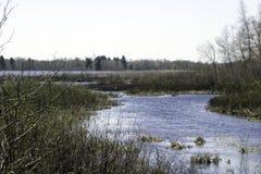 Lago superior Foto de archivo