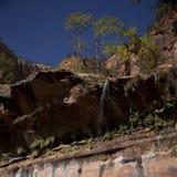 Lago superior en el parque nacional de Zion Imagen de archivo libre de regalías