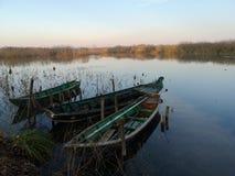 Lago superior parco del Mincio Mantova Itália fotos de stock