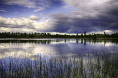 Lago svedese Immagini Stock