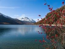 Lago svizzero Fotografia Stock