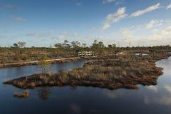 Lago swamp no nascer do sol fotografia de stock