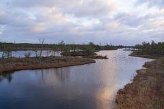 Lago swamp no nascer do sol fotografia de stock royalty free
