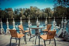Lago swan imagem de stock