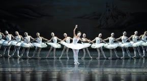 Lago swan di balletto immagine stock