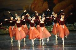 Lago swan di ballo-balletto del handshandle di scossa Fotografia Stock
