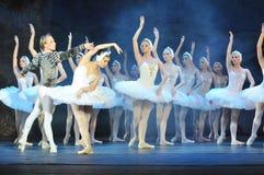 Lago swan, funcionamiento del ballet clásico foto de archivo libre de regalías