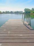 Lago swimming Immagini Stock