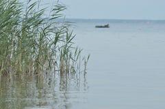 Lago Switaz Acqua pulita e chiara Fotografia Stock Libera da Diritti