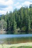 Lago Synevir mountain com árvores coníferas e o céu nebuloso Fotos de Stock Royalty Free