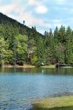 Lago Synevyr Foto de Stock Royalty Free